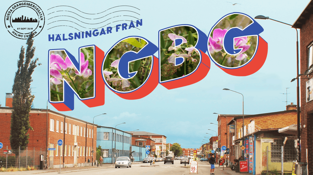 Postcard greetings from  NGBG 1000 560